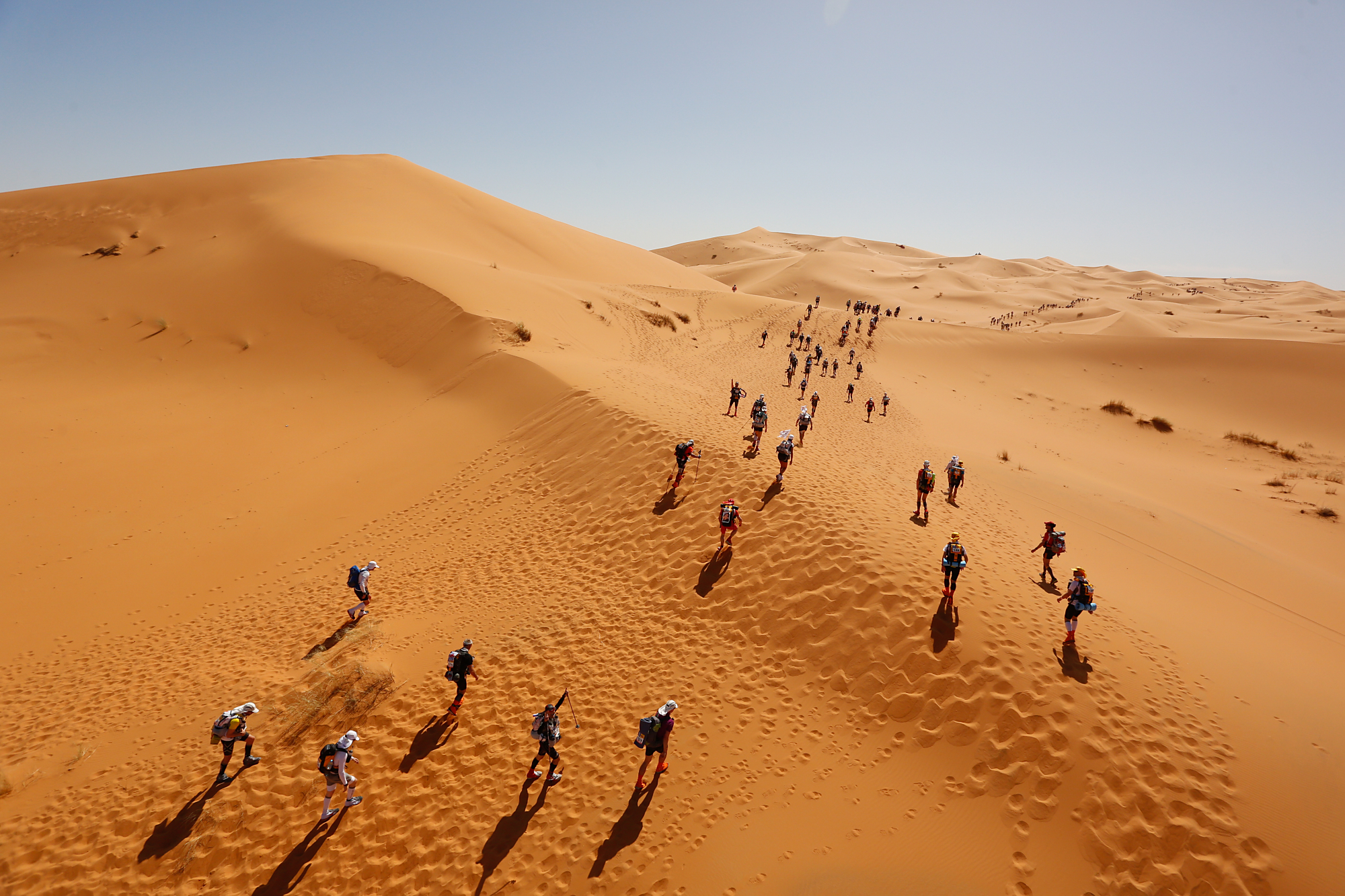 Image result for Marathon des sables